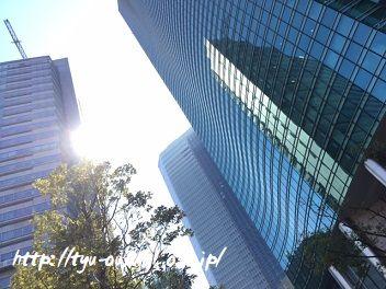久々に汐留シティセンター41Fをそぞろ歩きました @汐留