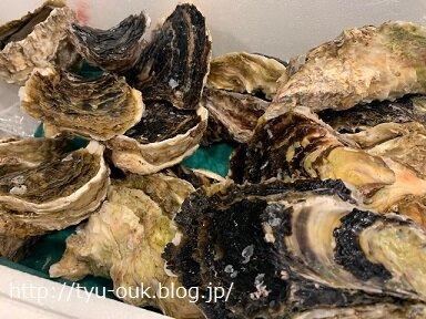 facebook「コロナ支援・訳あり商品情報グループ」で岩牡蛎を購入してみました