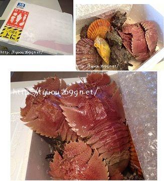 長崎県平戸市から届いた「平戸瀬戸物語」を贅沢に食す…!