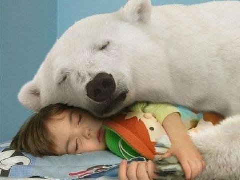 【ほっこり】子供×動物って、なんでこんなに和むんだろ