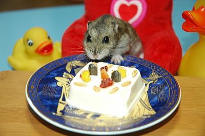 おいちい!誕生日!