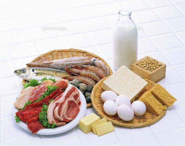 食べ物 タンパク質