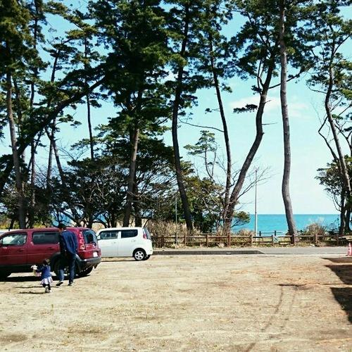 海と松林の借景地
