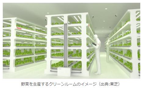 """【富士通も東芝も、""""工場のクリーンルームで無農薬野菜づくり""""】野菜は工場で生産するモノになったんだね!"""