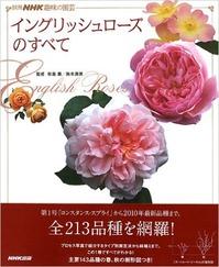 """【トゲが少ないバラ(イングリッシュローズ)42種】リストつくりました☆ """"丸くて香り豊かなオールドローズ""""系の四季咲きがほしいけど、棘が苦手という方へ"""