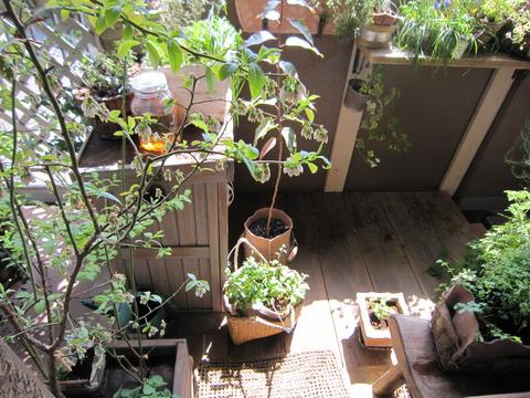 【ベランダの鉢台】木製収納庫は縦置きで。日当たりだけでなく、部屋からの眺めもしっかり確保しよう!