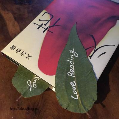 """【レモンユーカリ】強香の葉をもつハーブ☆ 大きな葉を乾燥させれば、レモン香る""""本のしおり""""になりますよ~"""