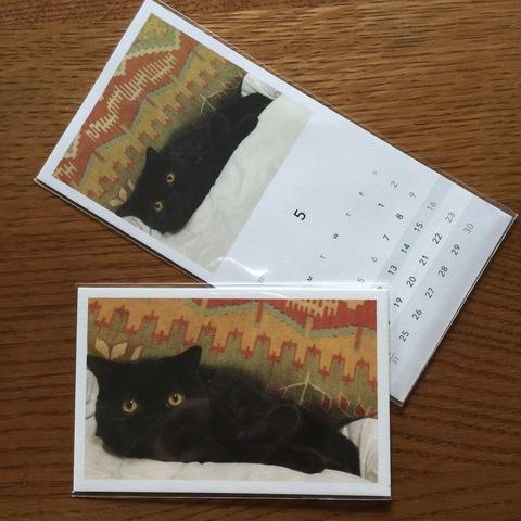 【スマホから、写真ハガキを郵送できるサービス2選】「モカ」はしっかり厚みのあるポストカード。そのまま飾れるぐらいオシャレです! カレンダー付きの「レター」も捨てがたい。