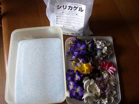 """【生花のシリカゲル乾燥】""""花の形も色も"""" そのままドライに! ポプリの飾りに☆"""