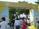 thai fes board