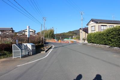 6b8f011d.jpg