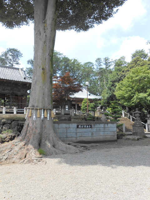 瀧宮神社 深谷
