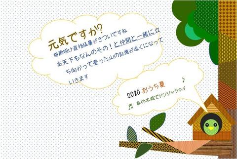 森の小人だより20200812