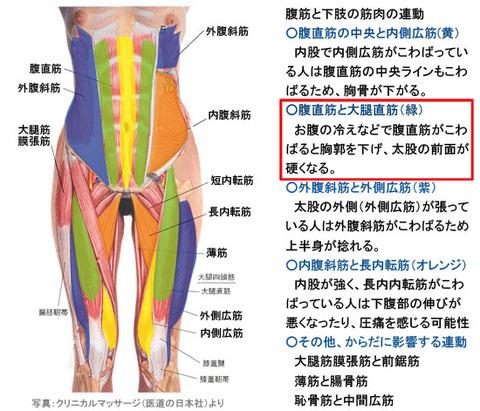 腹筋と下肢筋肉の連動2