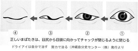 瞬目の動き01