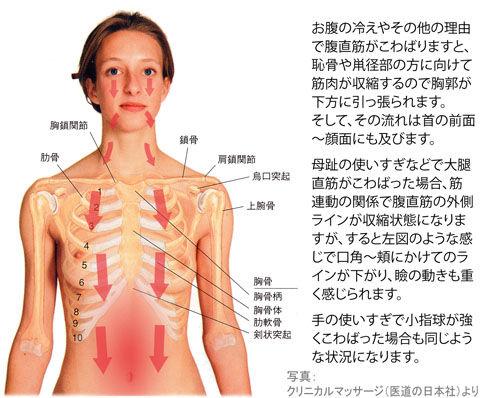 大直・腹直筋の「こ」による口角の下がり