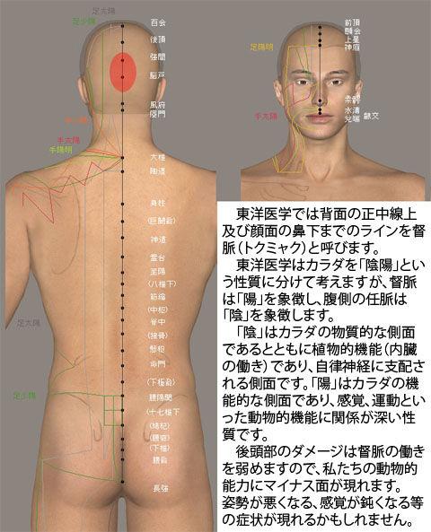 督脈の傷の影響