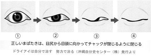 瞬目の動き02