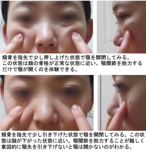 頬骨の上下と顎の開閉
