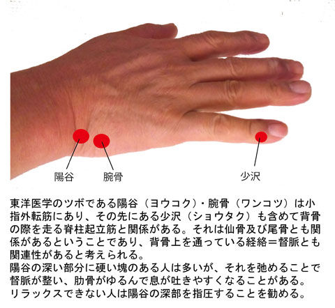 陽谷・腕骨・少沢