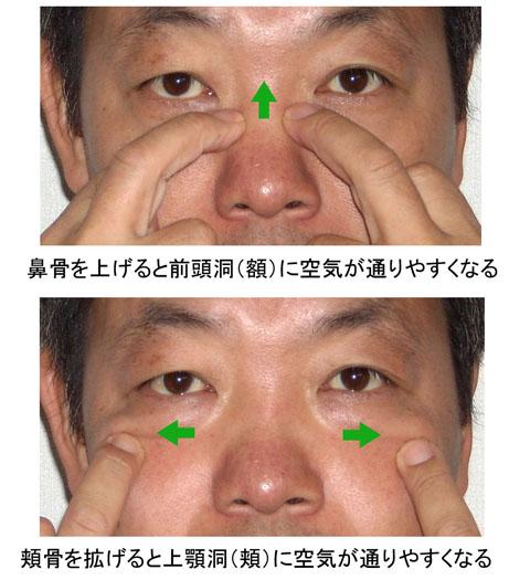 鼻骨と頬骨を操作