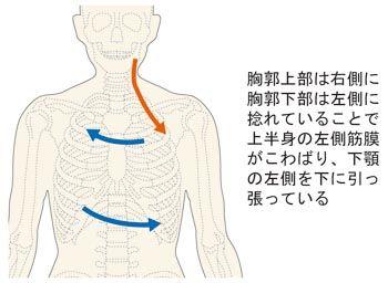 体の捻れで下顎骨を引っ張る