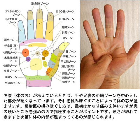 手の小腸区施術