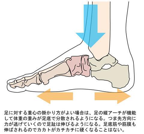 足に掛かる重心と足底_1