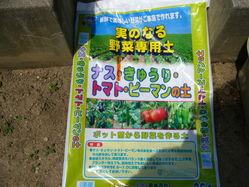 実のなる野菜の土