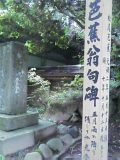 60404df5.jpg