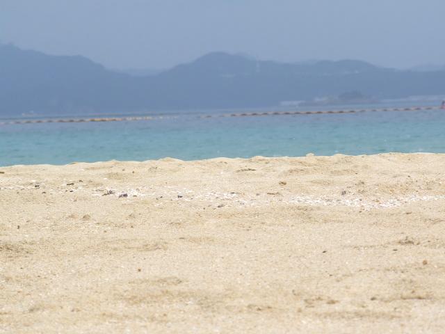 伊王島 天気