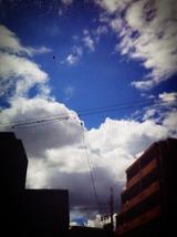 2012-08-05 13:58:08 写真1