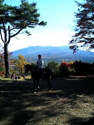 紅葉台山頂