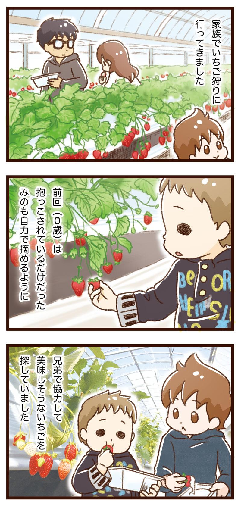 yumui261-1
