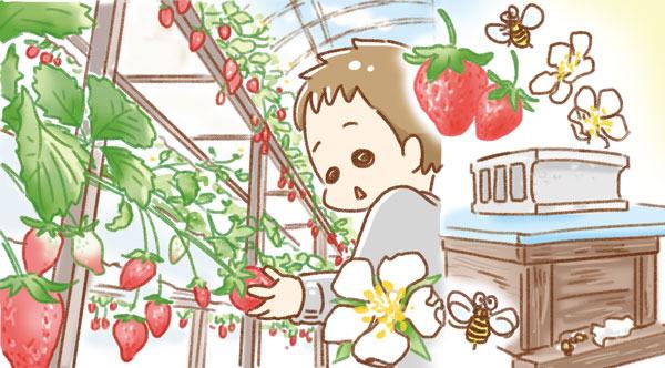 春といえば〇〇〇狩り(キッズコマチ)