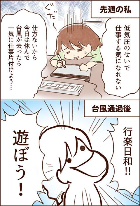 yumui335-1