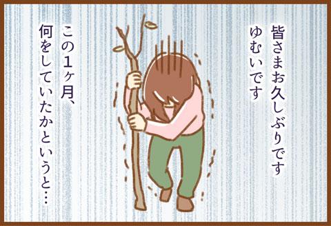 yumui377-1