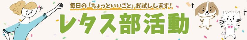 bukatsu_header_pc