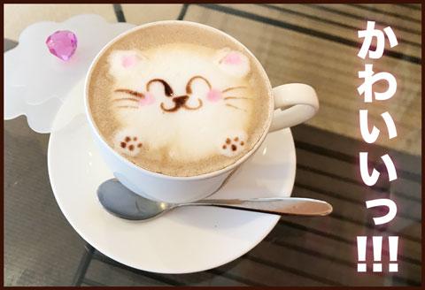 猫カフェ ゆむい