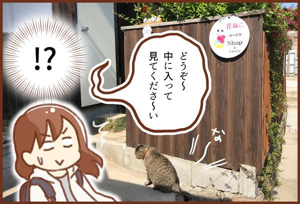 広島一人旅②尾道の猫!ネコ!ねこ!