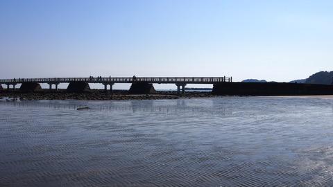 青島海岸から弥生橋