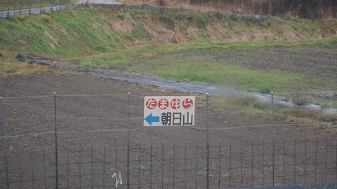 竹原桜2 (44)