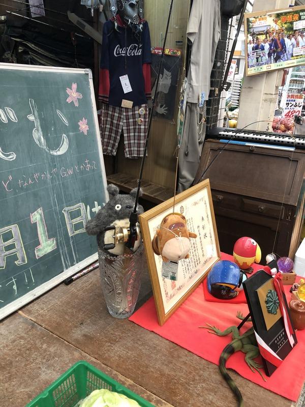 叡電と出町柳商店街 (32)