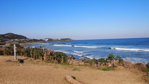 金ヶ浜海岸(4)