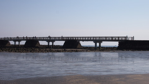 弥生橋横から