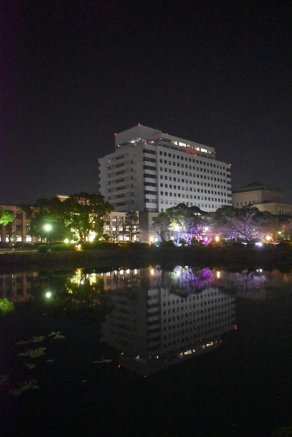 佐賀の夜〜さくらちゃんが泊まったホテルに僕も泊まる〜 (10)