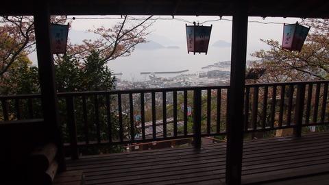 竹原桜1 (8)