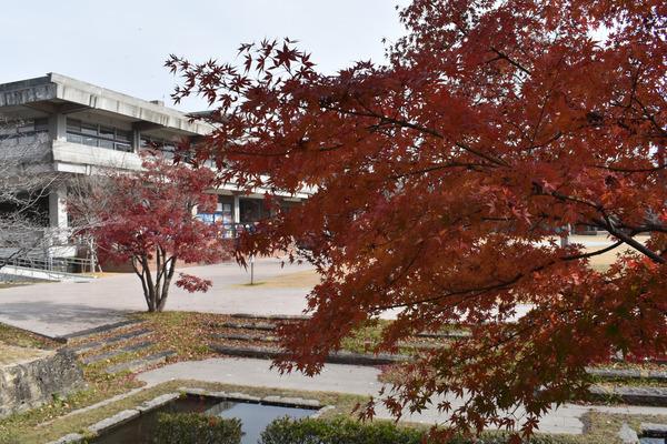 佐嘉神社の紅葉とゾンサガスタンプラリー (13)