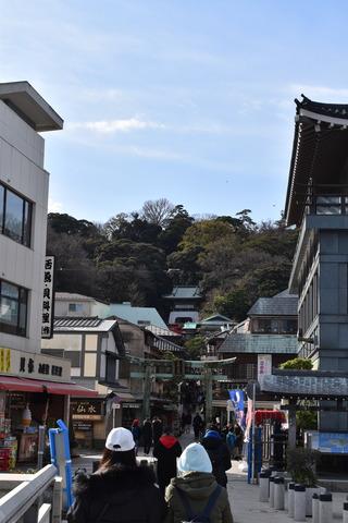 江ノ島&藤沢 (200)