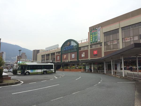 2015春アレイからすごじま (6)